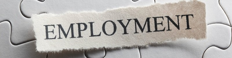 An Employment Law Solicitor can make things easier