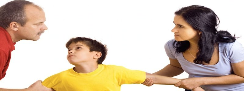 Child Custody is all about the children